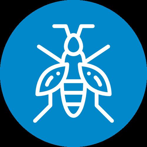 Wasp & Hornet Exterminator